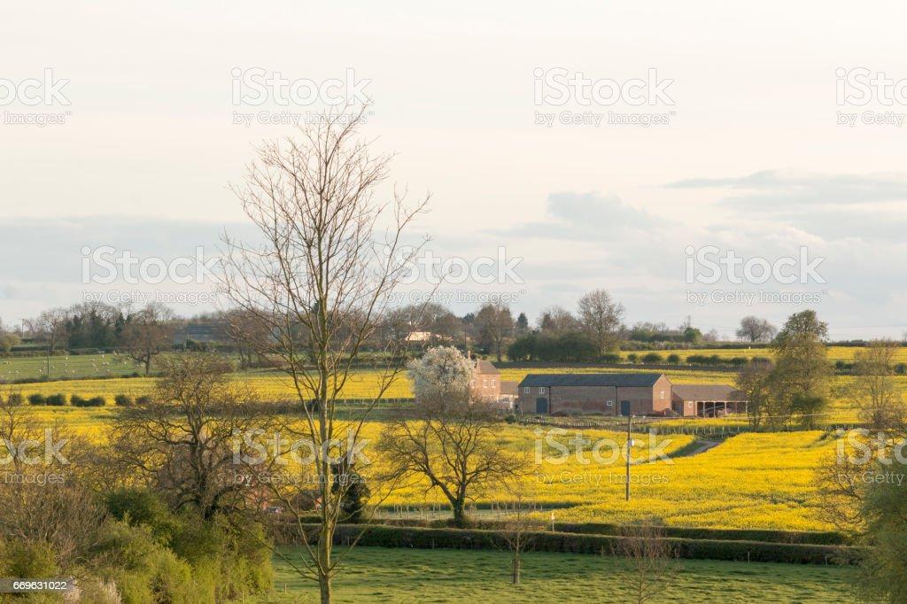 Farm Buildings In Spring stock photo