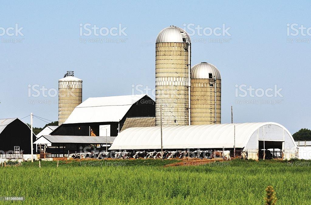Farm Buildings royalty-free stock photo