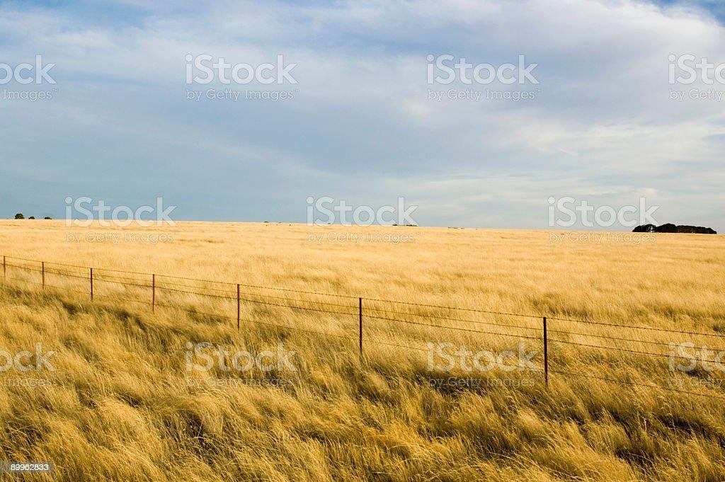 Farm Colors stock photo