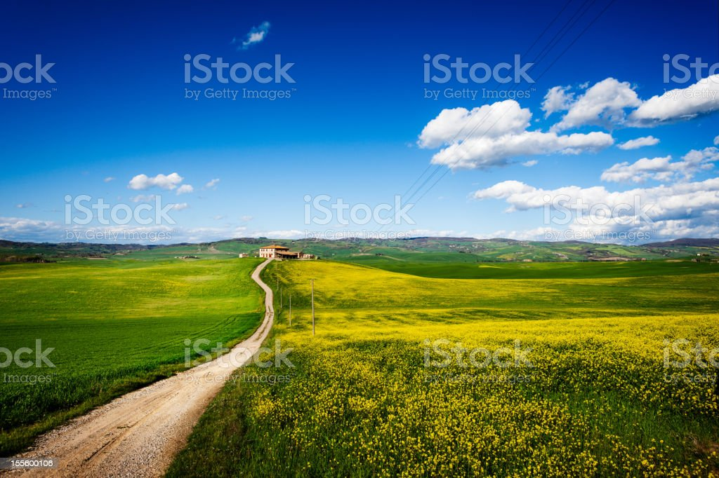 Farm, Country Road through the Fields stock photo