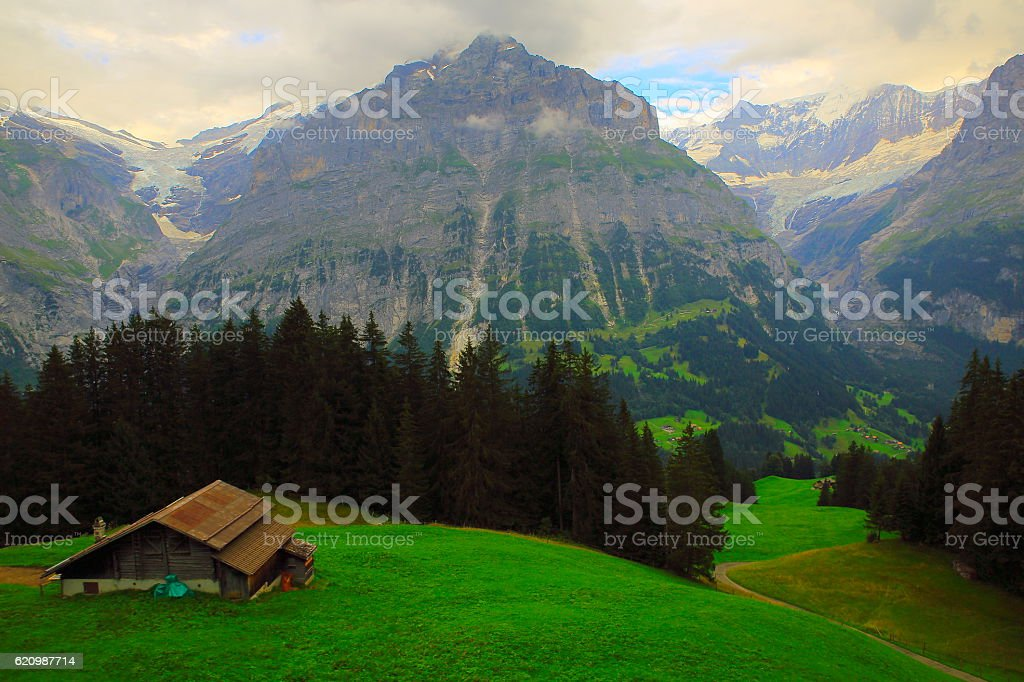 Farm countryside above Grindelwald valley, Wetterhorn Landscape, Swiss Alps stock photo