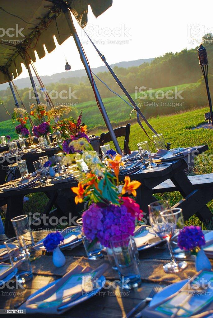 Farm Dinner stock photo