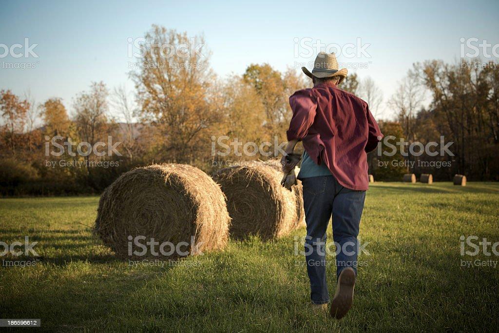 Farm emergency royalty-free stock photo