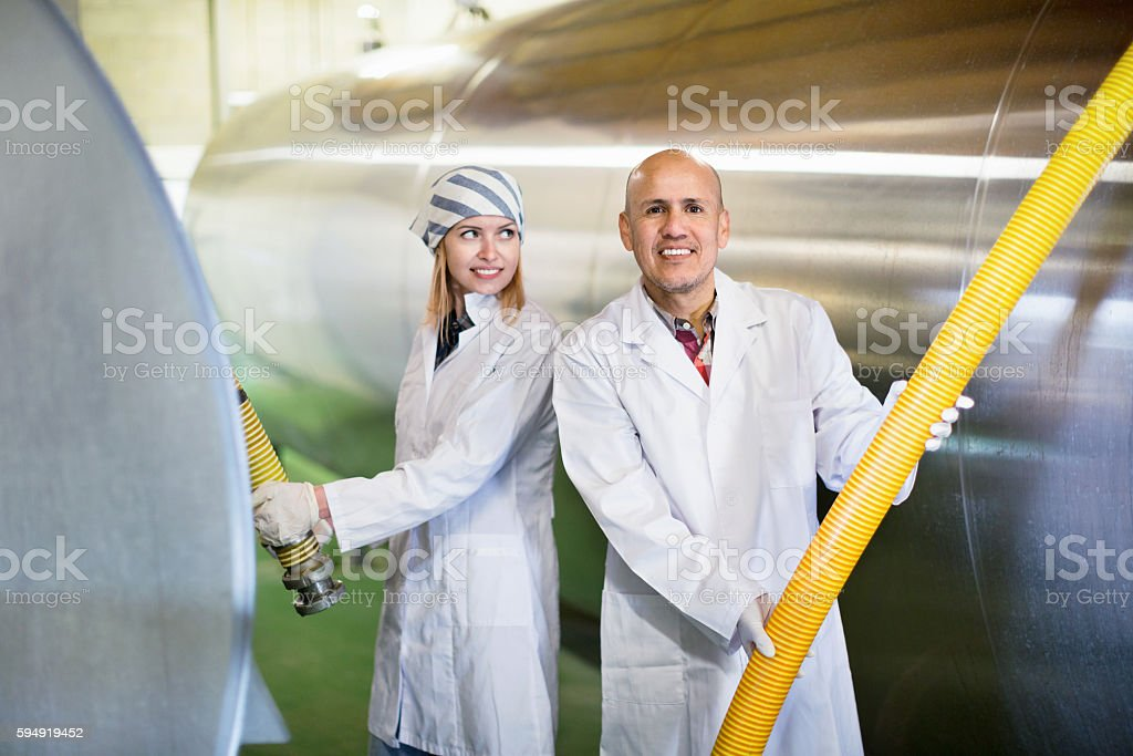 Farm employees working in raw milk sector of livestock farm stock photo