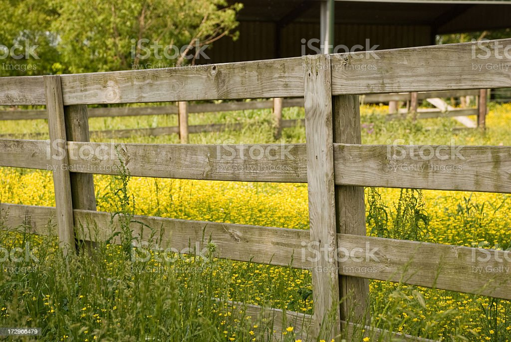 Farm Fence royalty-free stock photo