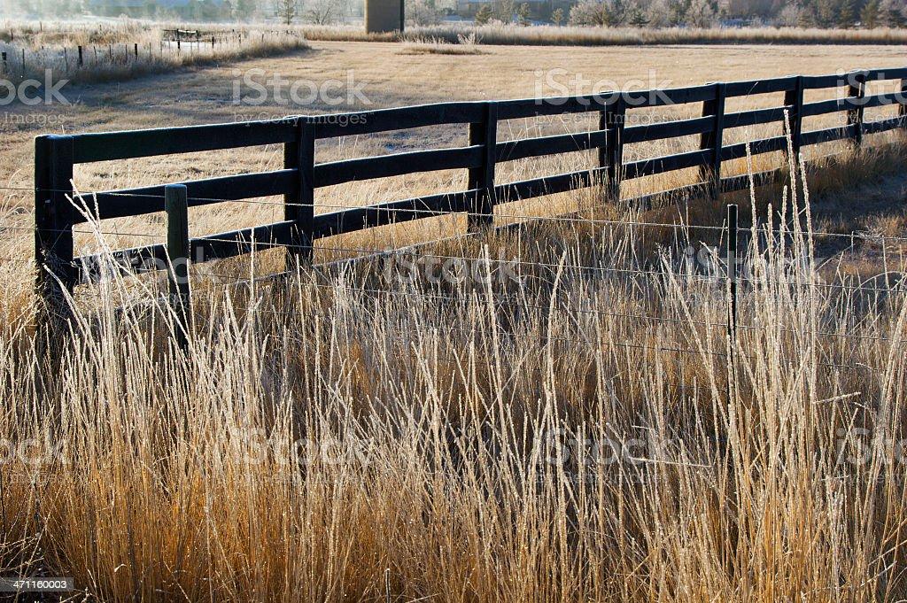 Farm Fence royalty-free stock photo