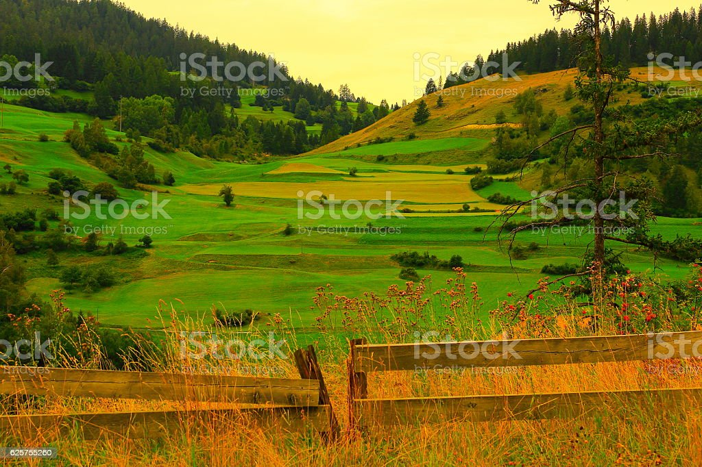 Farm Fence, Swiss idyllic alpine meadow panorama, Engadine, Swiss Alps stock photo