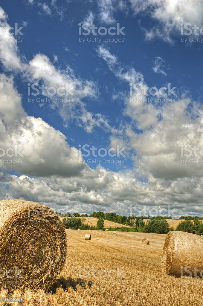 Farm Field with Hay Bale on a Summer Day (III) royalty-free stock photo