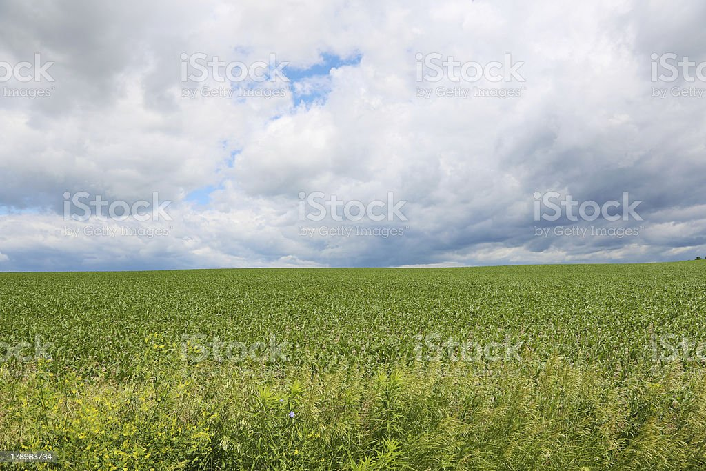 Farm Field with storm rolling in royalty-free stock photo