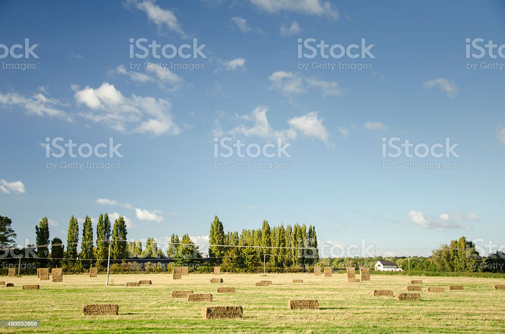 Farm Fields in Autumn in England stock photo