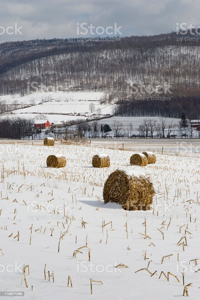 Farm Fields in Snowy Valley, Winter Agriculture Landscape royalty-free stock photo