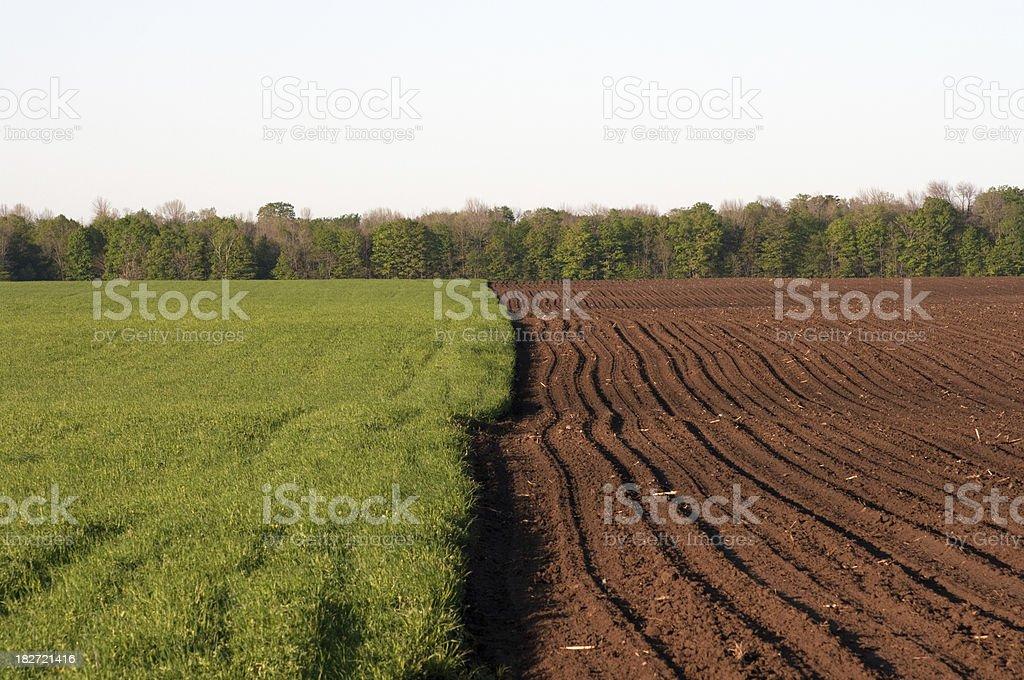 Farm Fields stock photo