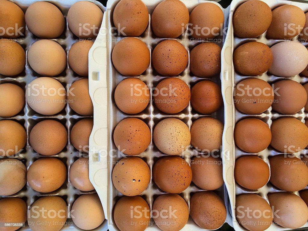 Farm Fresh Brown Eggs stock photo