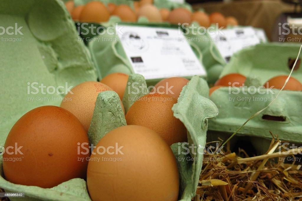 farm fresh brown organic eggs in green cartons stock photo