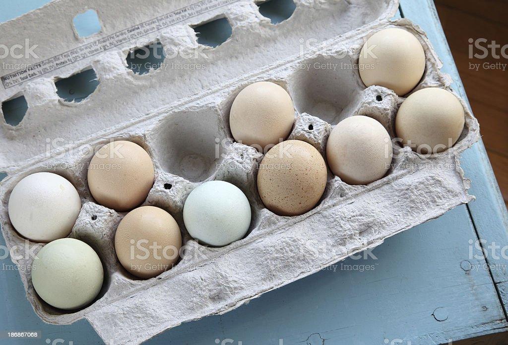 Farm Fresh Eggs in Carton stock photo