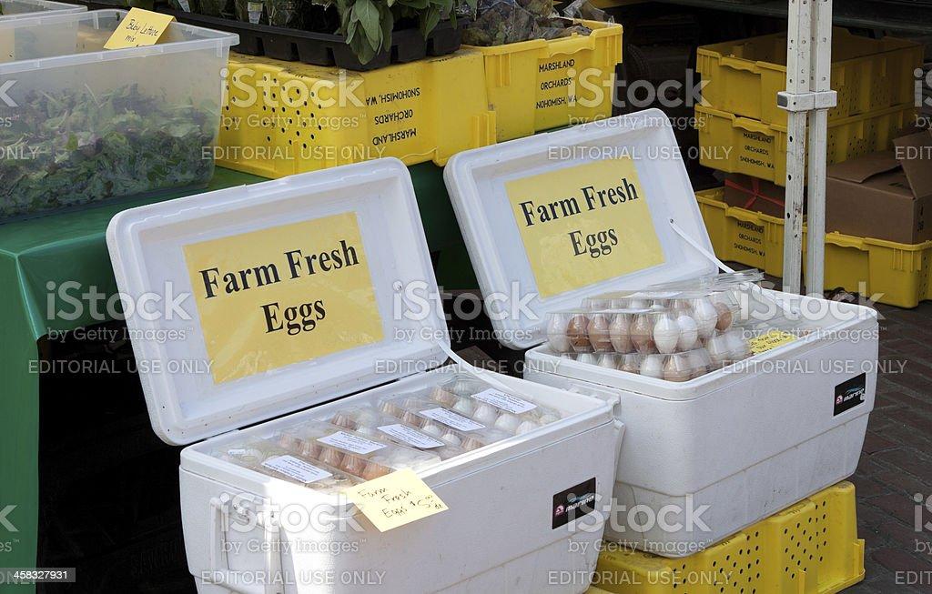 Farm Fresh Eggs royalty-free stock photo