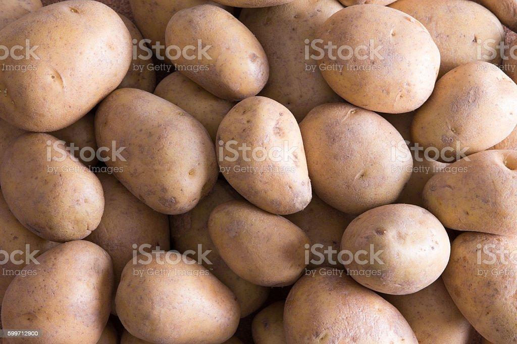 Farm fresh golden potatoes stock photo