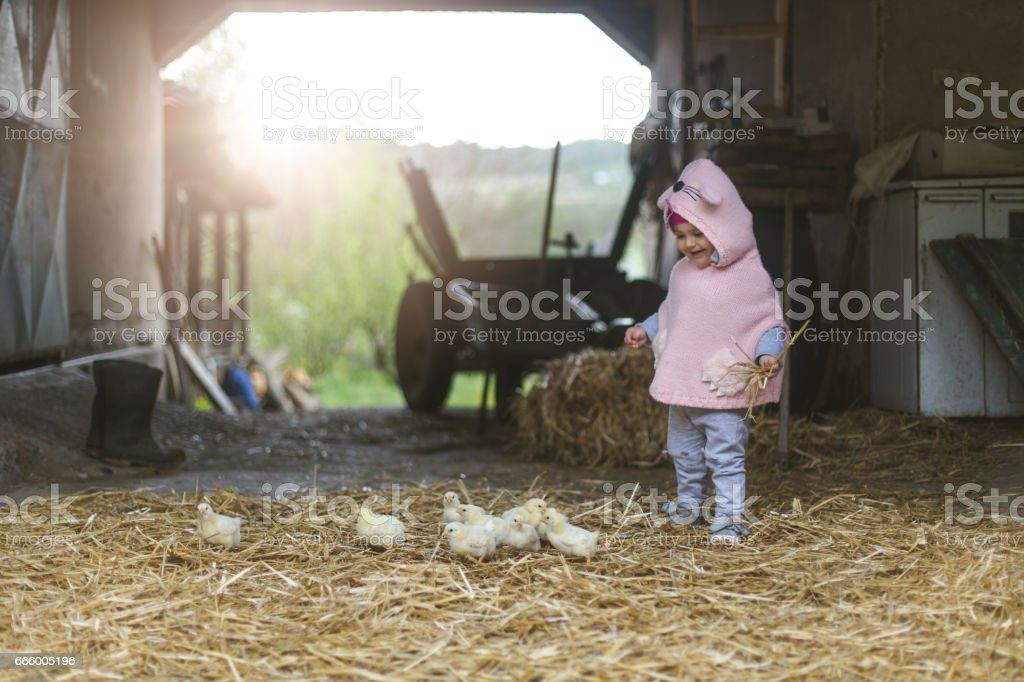 Farm girl with chickens smiling candid stock photo