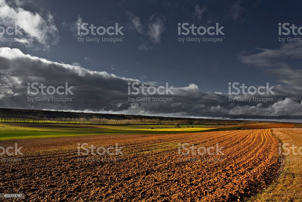 Farm grooves in the Cultivated lands stock photo