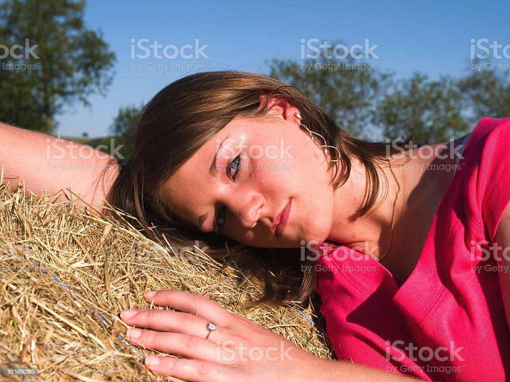 Farm holidays royalty-free stock photo
