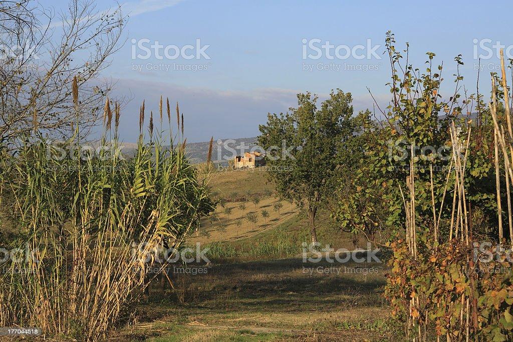 farm house afar stock photo