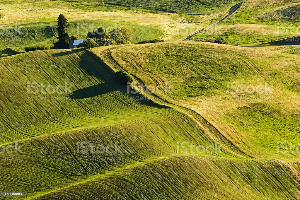 Farm house in rolling hills royalty-free stock photo