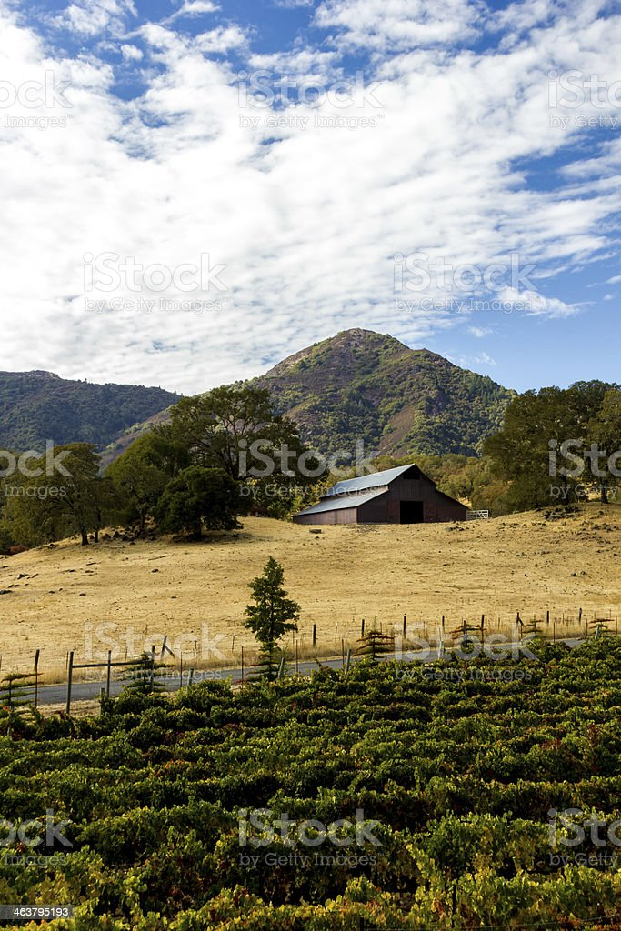 Farm house over looking a vineyard stock photo
