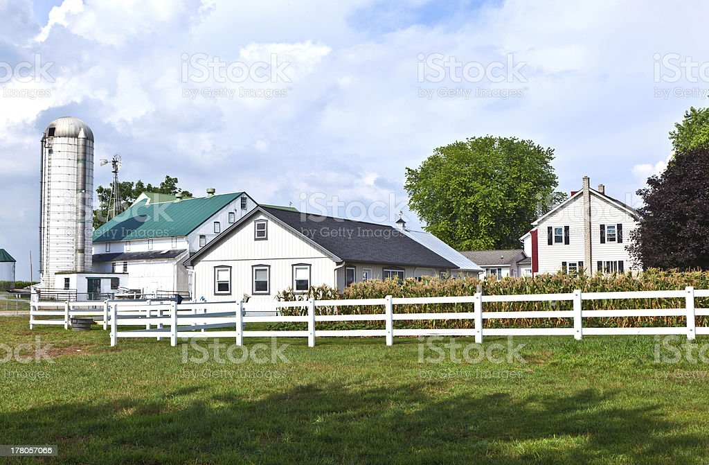 farm house with field and silo stock photo