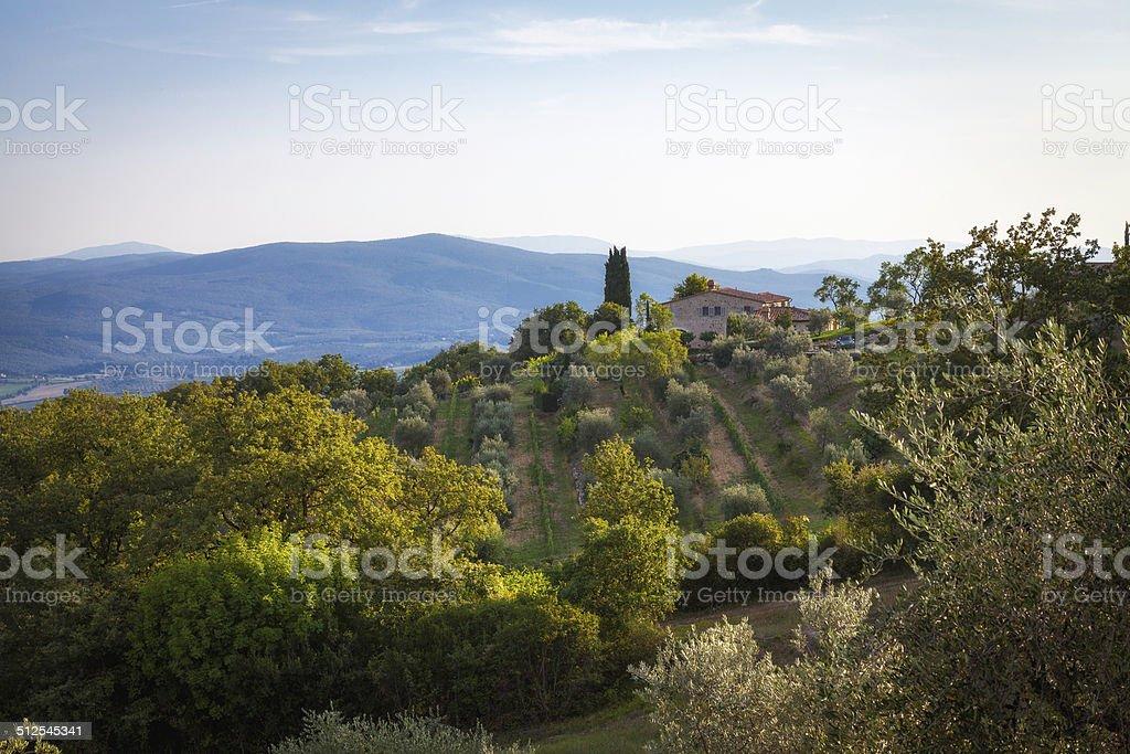Farm in Chianti region. Color image stock photo