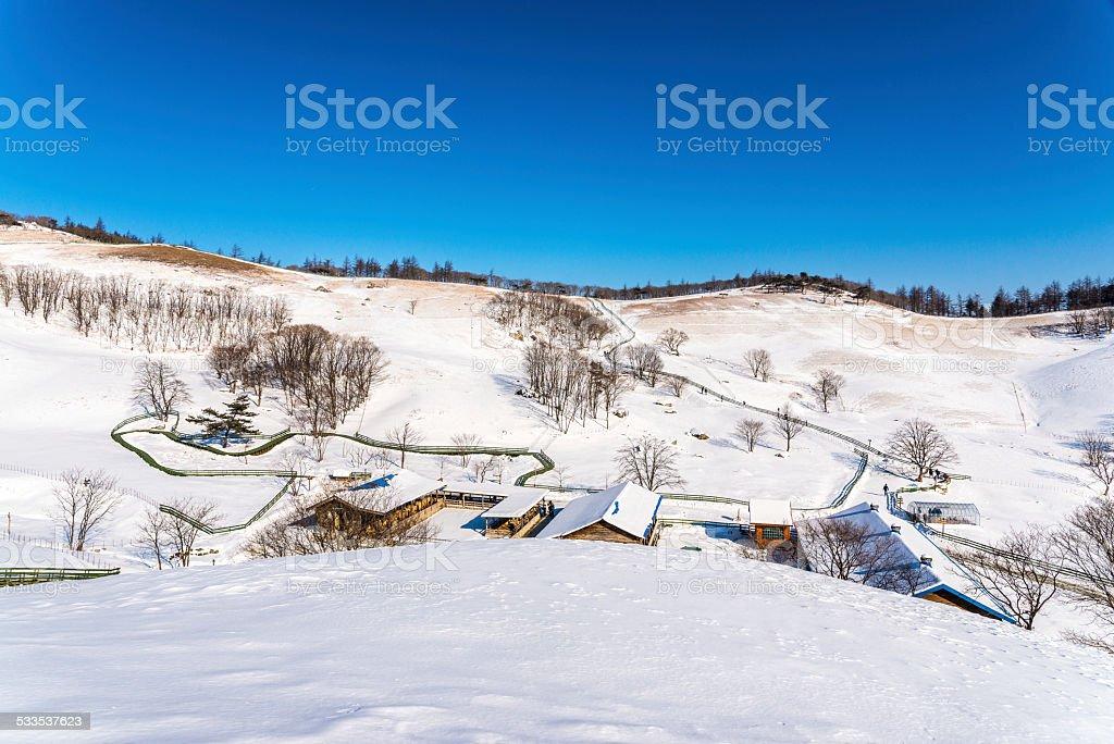 Robotnik w śniegu zbiór zdjęć royalty-free