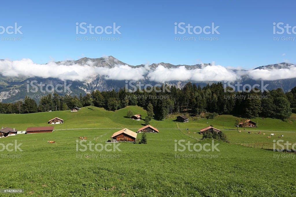 Farm in the alps in Switzerland stock photo