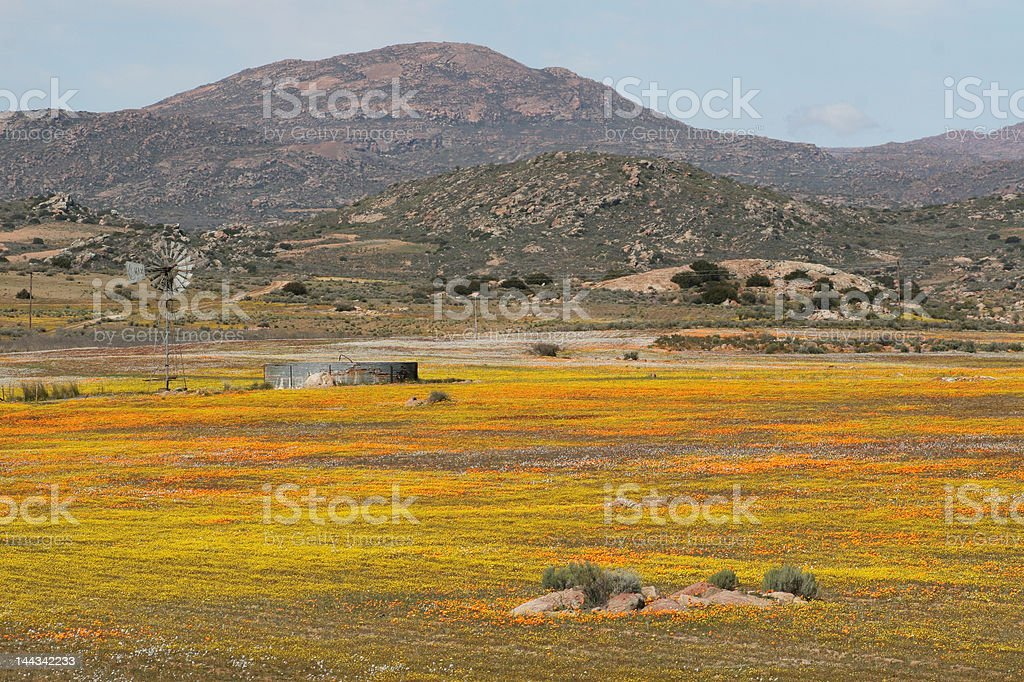 Farm in the Namaqualand stock photo