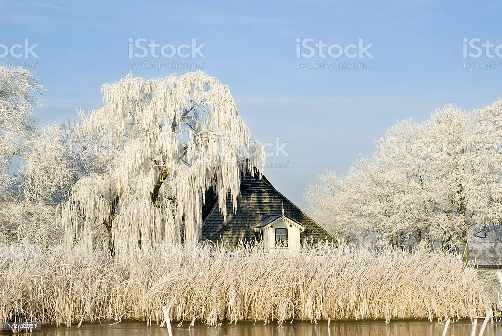 Farm in Winter royalty-free stock photo