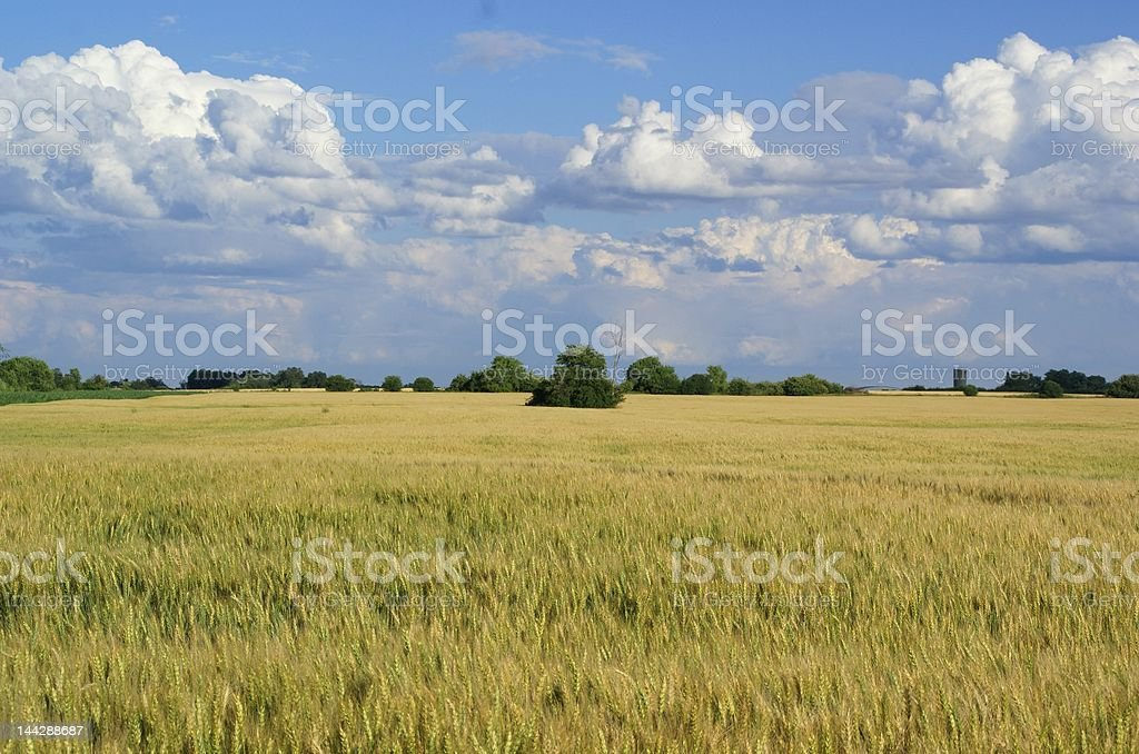 farm land royalty-free stock photo