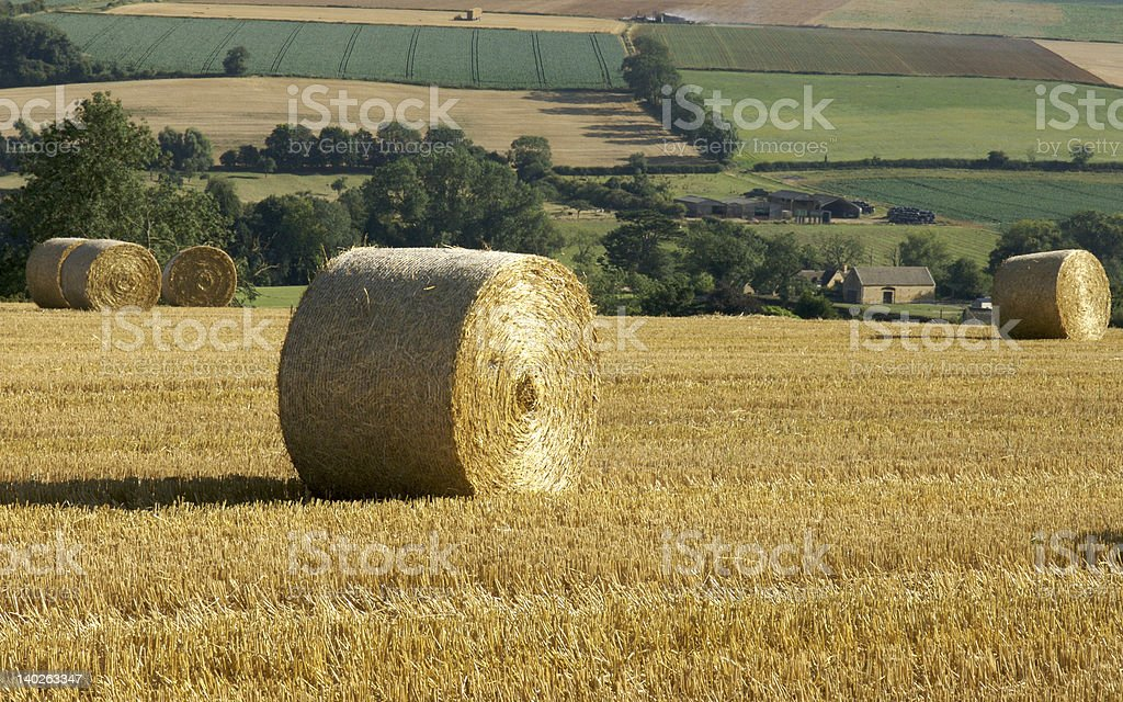 Farm land with hay bales spread out royalty-free stock photo