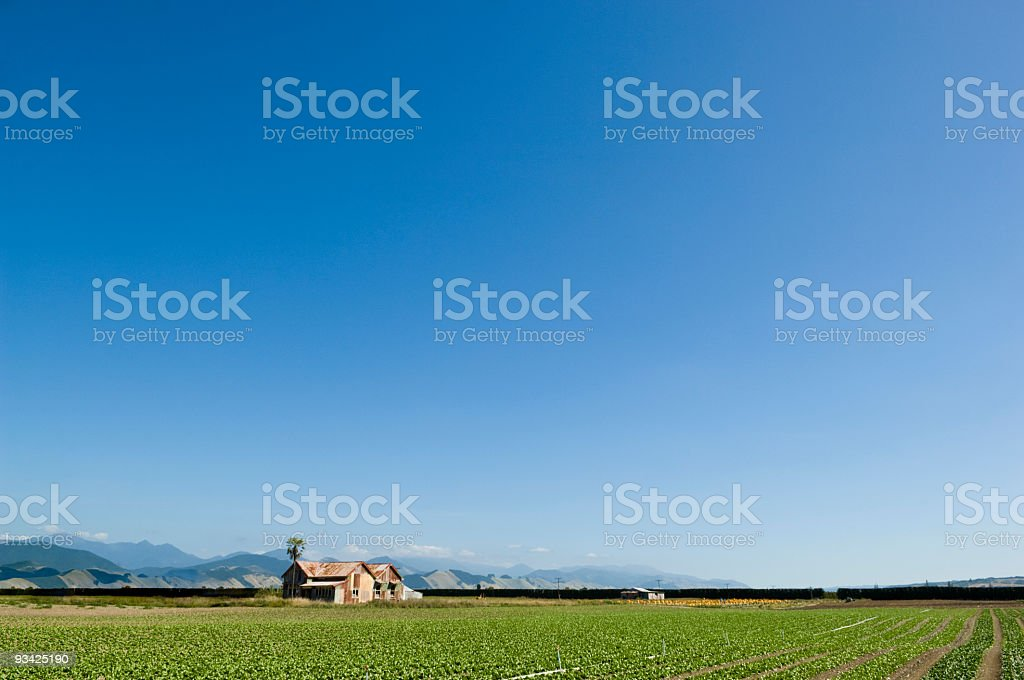 Farm Landscape royalty-free stock photo