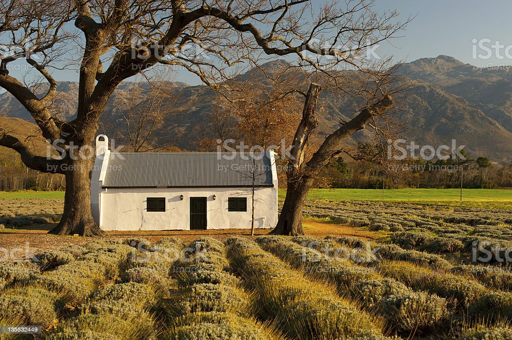 farm landscape with house and mountains, south africa stock photo