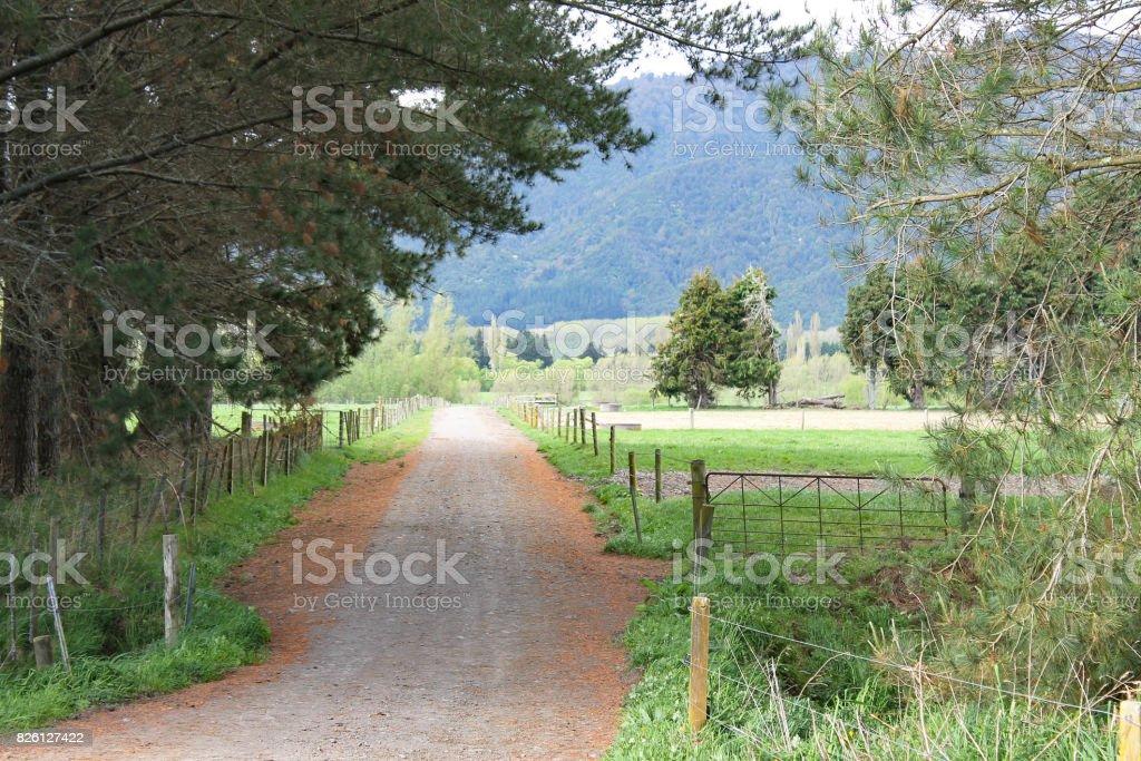 Farm Life stock photo