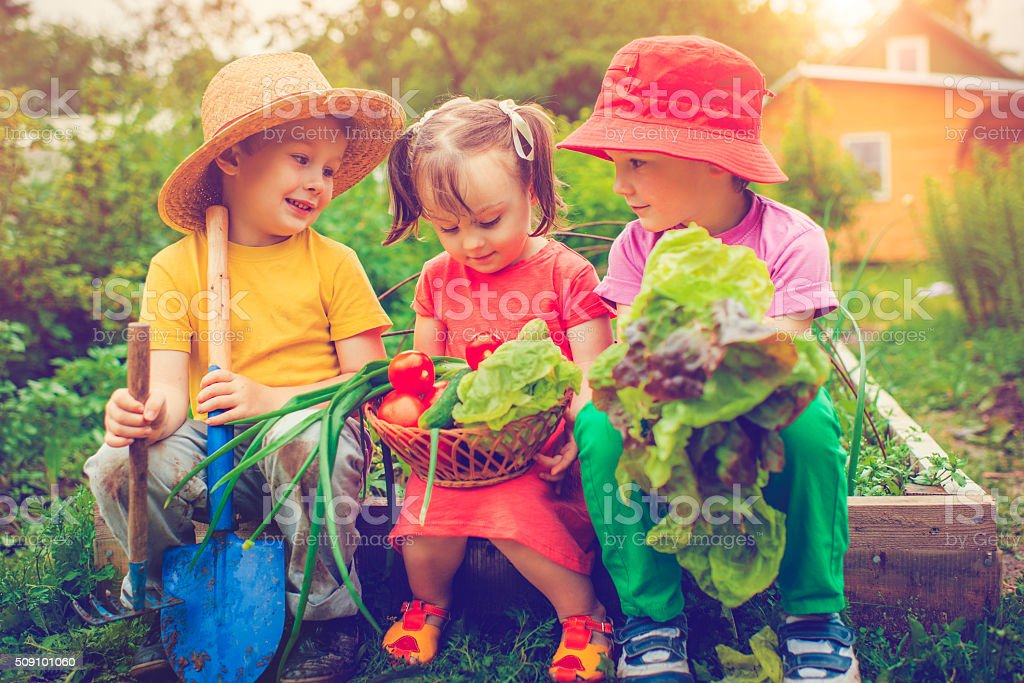 Farm living stock photo