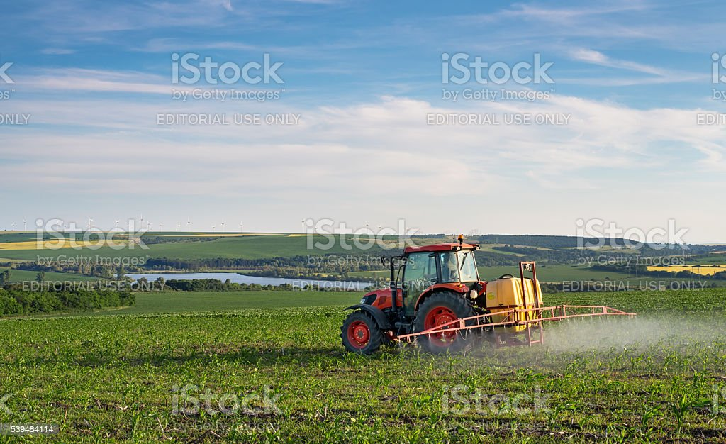 Farm machinery spraying insecticide to the green field. stock photo