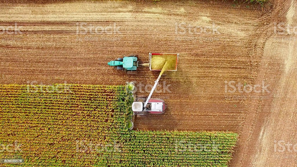 Farm machines harvesting corn in September, aerial view stock photo