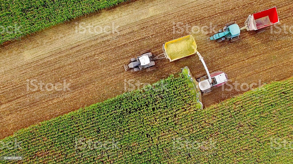 Farm machines harvesting corn in September, aerial view stock photo