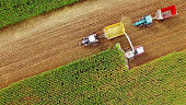 Farm machines harvesting corn in September, aerial view