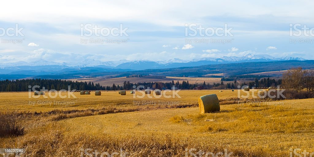 Farm near Rocky Mountains in sunlight  stock photo