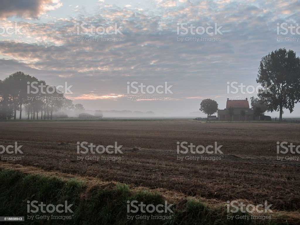 Farm on a misty morning in Zeeland, The Netherlands stock photo
