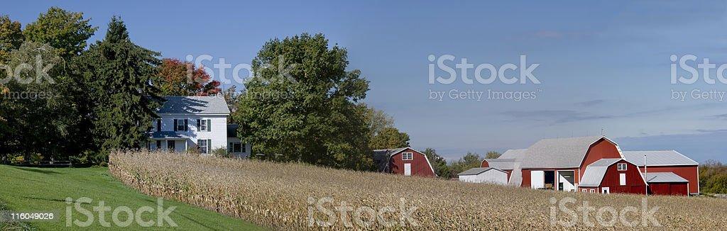 Farm Panorama in Autumn stock photo