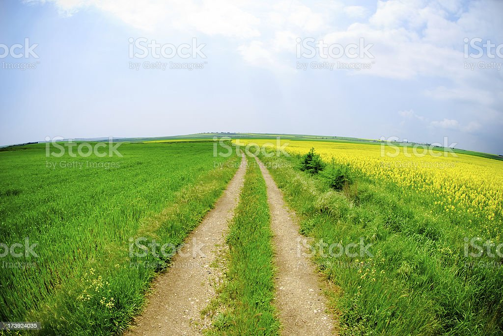 farm path royalty-free stock photo