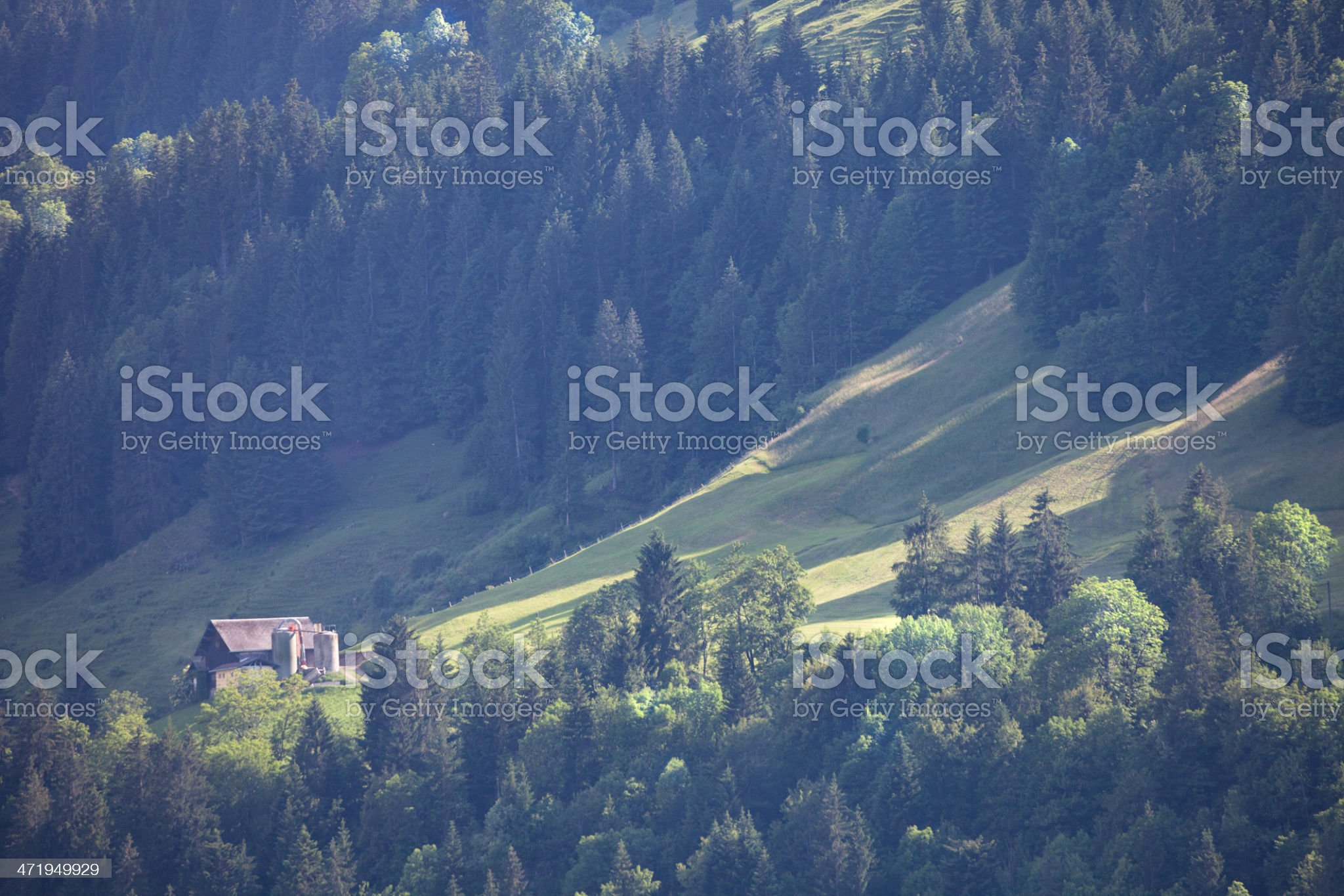 Farm perched on steep hillside, Swiss Alps royalty-free stock photo