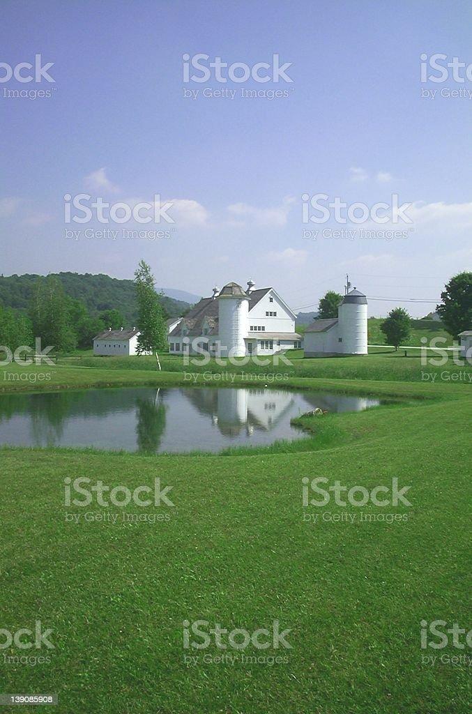 Farm Pond View royalty-free stock photo