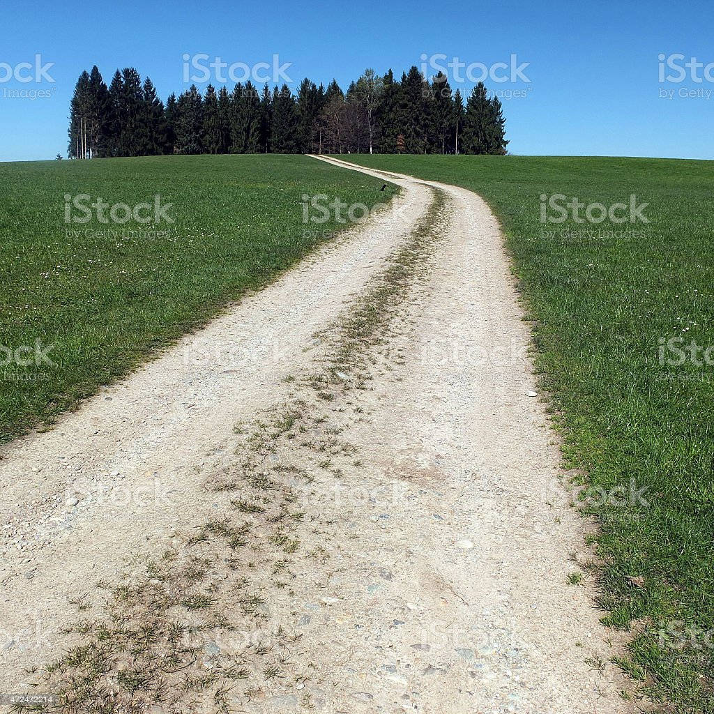 Farm road between meadows stock photo